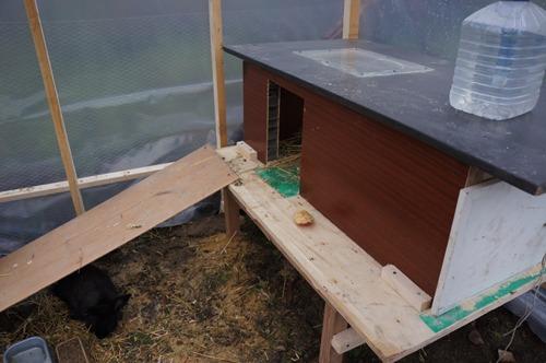 ウサギの一軒家_f0106597_0224647.jpg