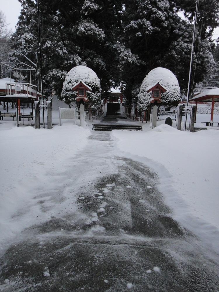 猛吹雪の一日_c0111229_18134669.jpg