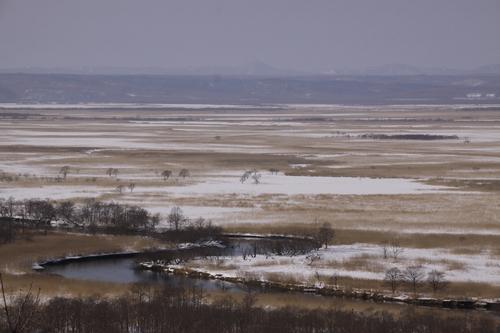 冬の釧路湿原  2月8日_f0113639_1613559.jpg