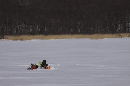 冬の釧路湿原  2月8日_f0113639_1622965.jpg