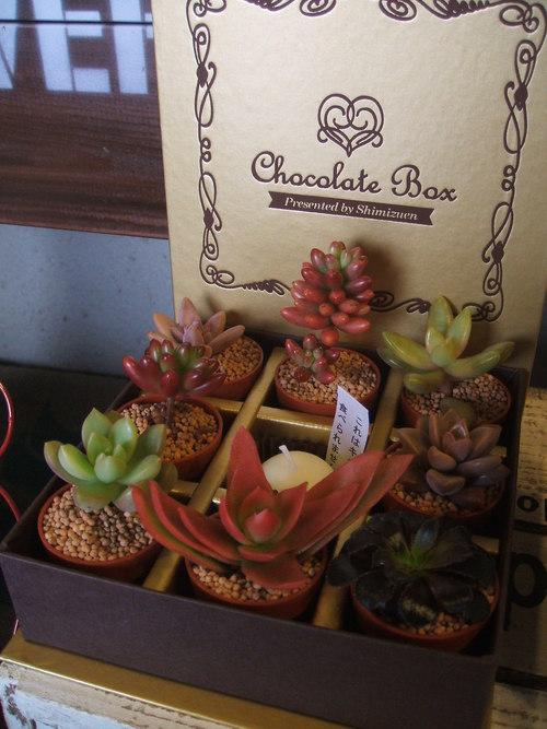 チョコレートボックス_b0239952_21451279.jpg