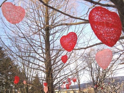 Valentine in Karuizawa ❤ 矢ヶ崎公園 / FEILER New Open!!_f0236260_23275554.jpg