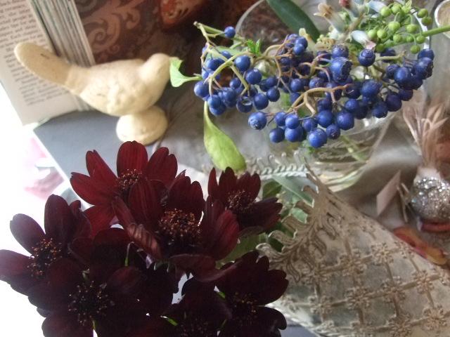 オークリーフ(黒い八重のクリスマスローズと、安行桜)_f0049672_1802670.jpg