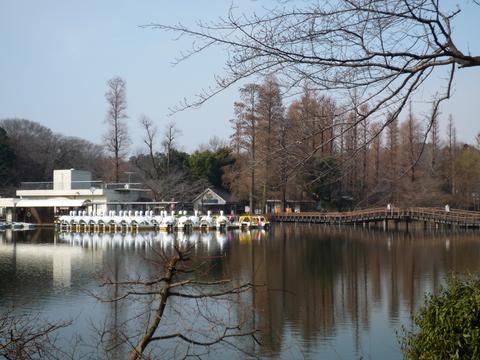 井の頭公園_e0232277_10303912.jpg