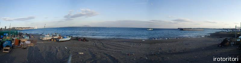 海です!!  (セグロカモメ?)  2013/02/08_d0146592_235156.jpg
