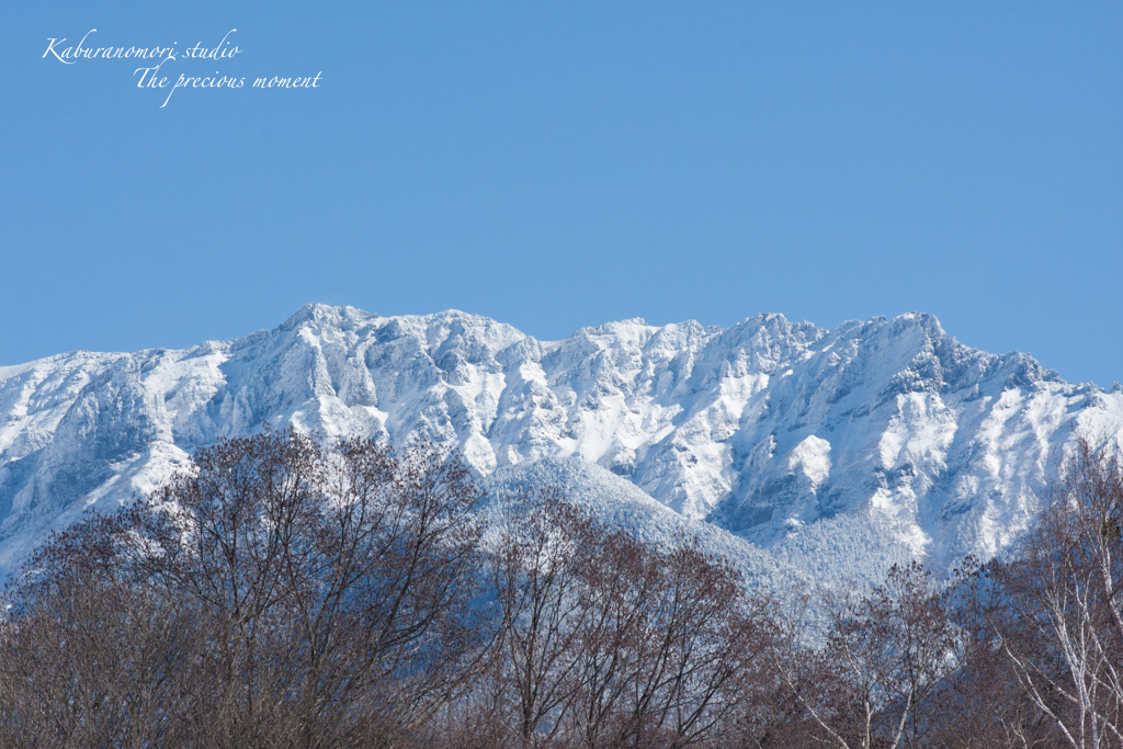 冬の八ヶ岳と白樺林_c0137403_17185672.jpg