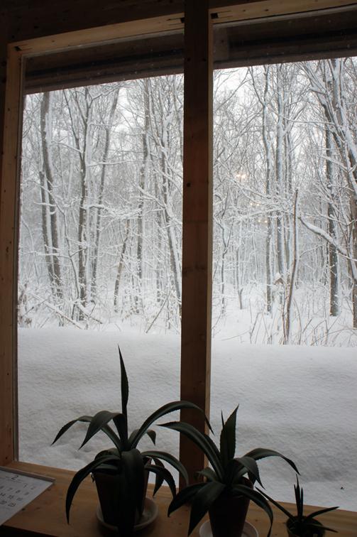 冬の嵐_f0160407_40420.jpg