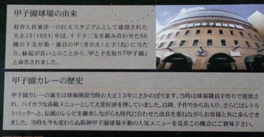甲子園球場特製 甲子園カレー_b0042308_13233846.jpg