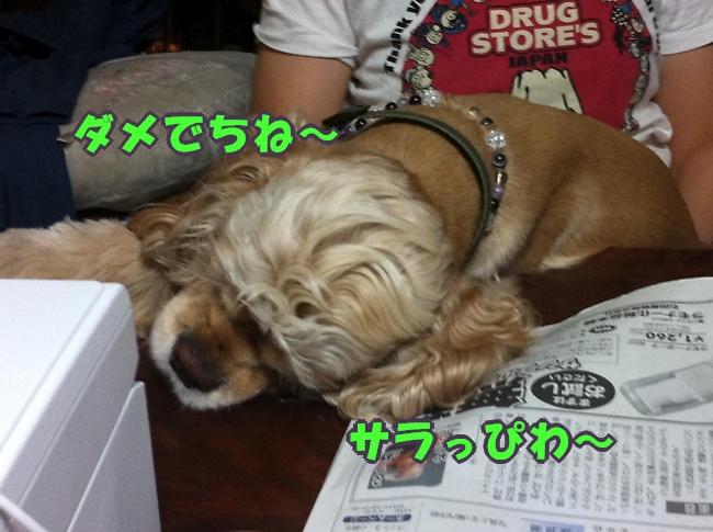 b0067012_2322087.jpg