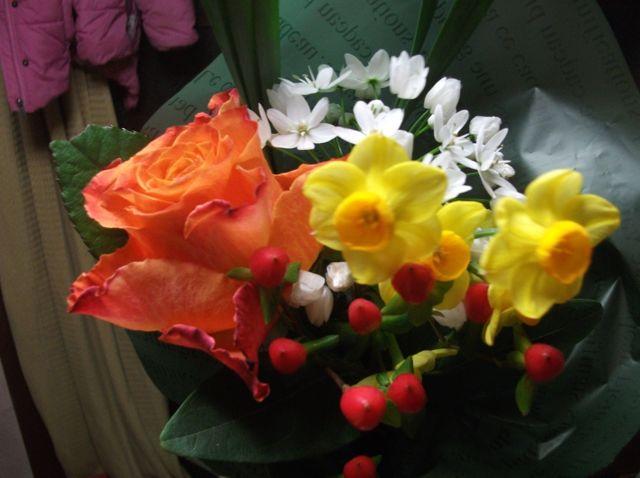 元気出せー、と花を買う。_f0177745_10533296.jpg