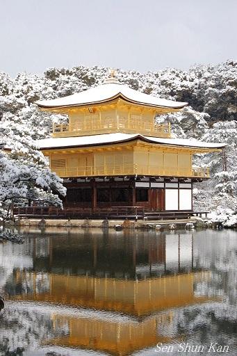 京都は、薄っすら雪化粧  2013年2月9日_a0164068_184547.jpg