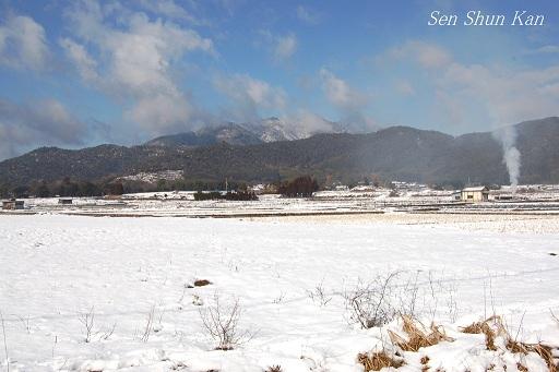 京都は、薄っすら雪化粧  2013年2月9日_a0164068_1851147.jpg