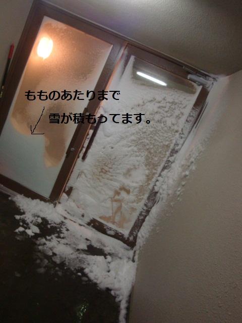 d0198074_0134040.jpg