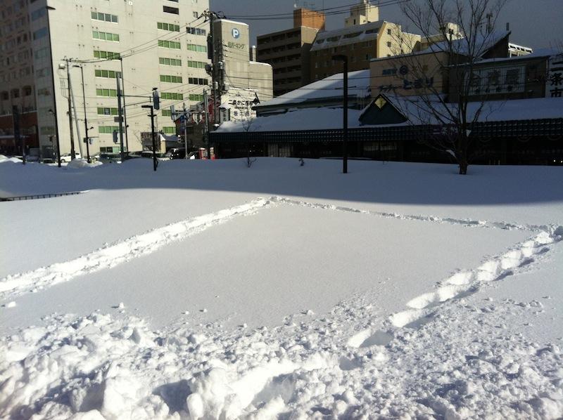 snow garden show_Day01_b0165697_2211826.jpg