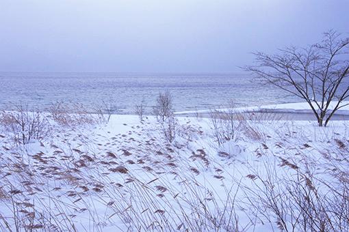 演目は「冬のぬくもり」_b0259218_125057.jpg