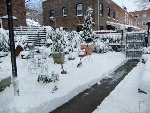 久しぶりの雪景色_c0064534_23574660.jpg