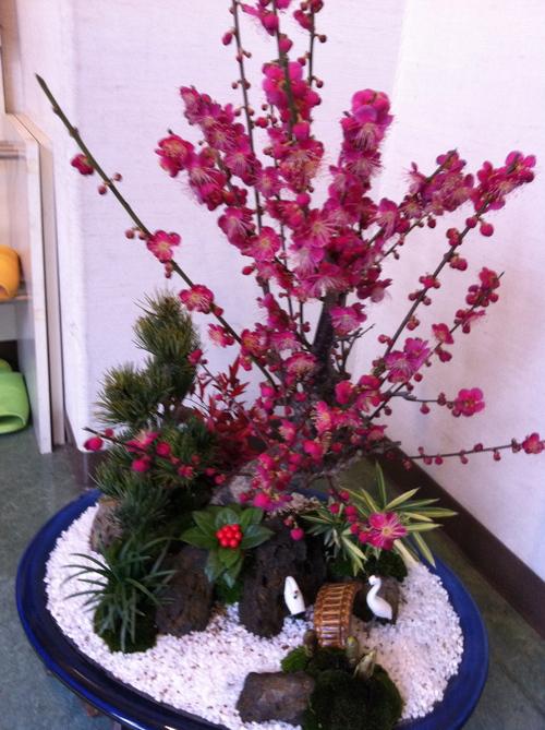 花盛りのバレンタイン_c0185356_839421.jpg