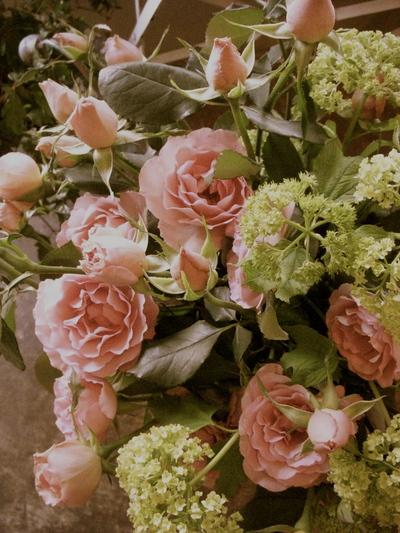 シュナーベルの花束。。。_a0229658_1833326.jpg