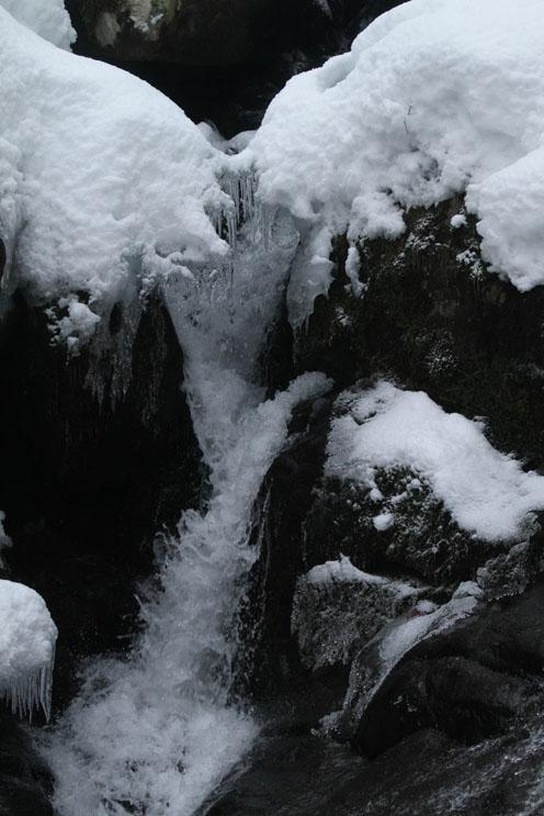 氷の世界_d0088788_19542831.jpg
