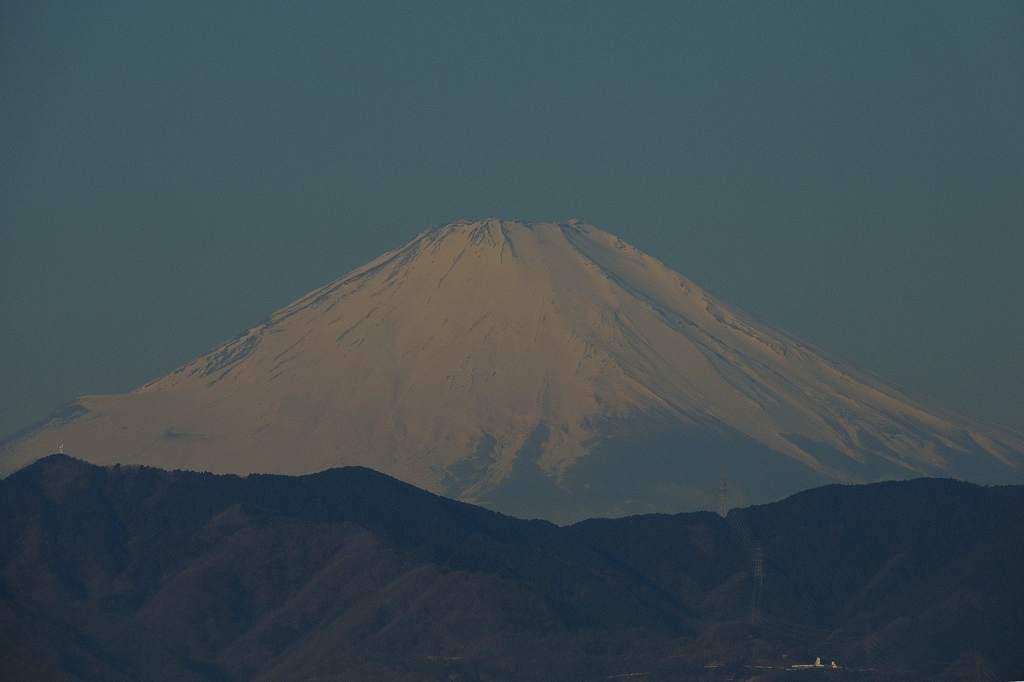 トモエガモ(1)/アリスイ&カワセミ・ツーショット/モズ♂/今朝の富士山_b0024798_16174714.jpg