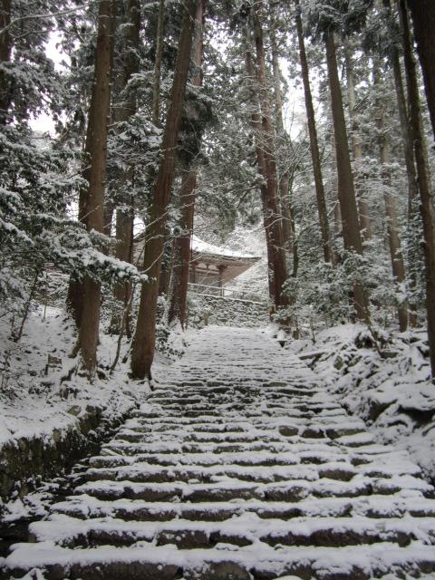 湖東三山 百済寺_c0088525_18114976.jpg