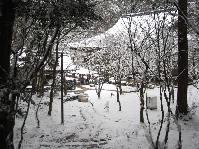 湖東三山 金剛輪寺_c0088525_2164690.jpg