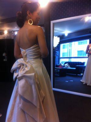 MY DRESSを作る3.本仮縫いと最終チェック_c0043737_1750263.jpg