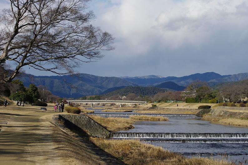 賀茂川散歩スナップ..._f0152550_0142370.jpg