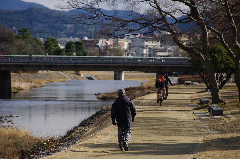 賀茂川散歩スナップ..._f0152550_0142823.jpg