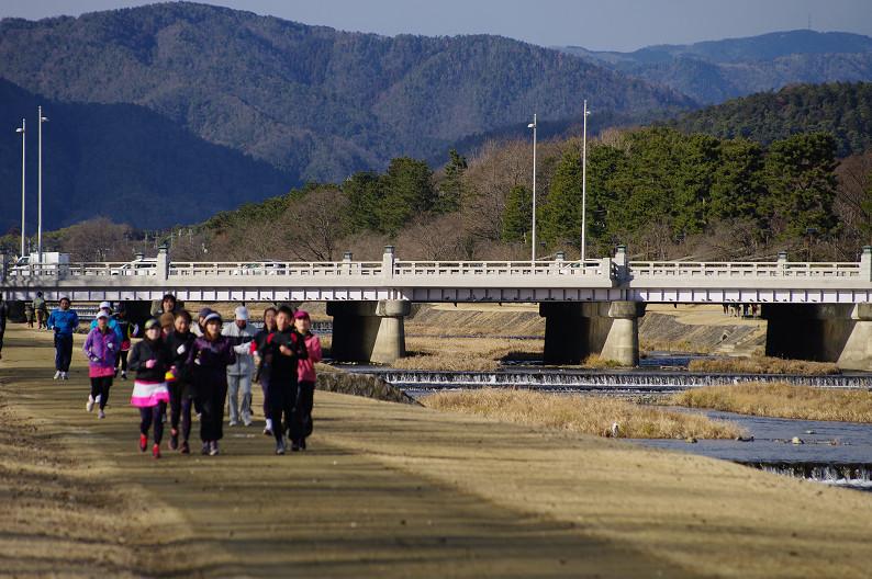 賀茂川散歩スナップ..._f0152550_0144047.jpg