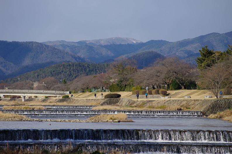 賀茂川散歩スナップ..._f0152550_014989.jpg