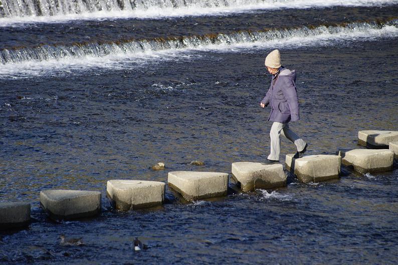 賀茂川散歩スナップ..._f0152550_015434.jpg