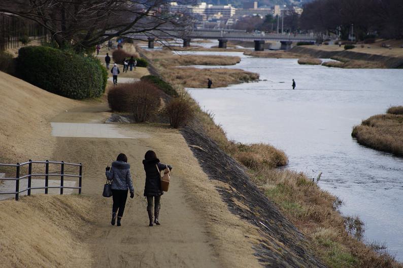 賀茂川散歩スナップ..._f0152550_017292.jpg