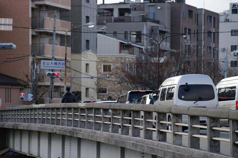賀茂川散歩スナップ..._f0152550_0174421.jpg