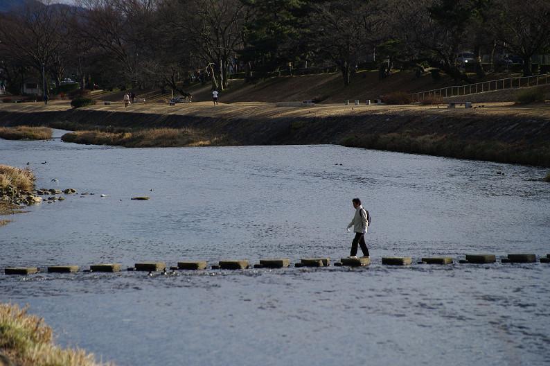 賀茂川散歩スナップ..._f0152550_018119.jpg