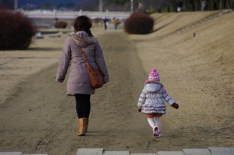 賀茂川散歩スナップ..._f0152550_0184494.jpg