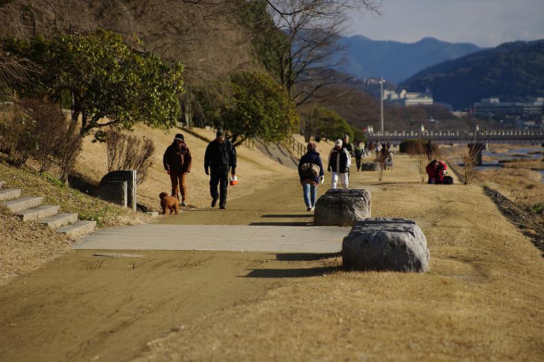 賀茂川散歩スナップ..._f0152550_01897.jpg
