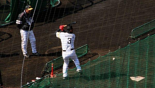 冬の宮崎は・・・プロ野球のキャンプだね_d0030373_2126264.jpg