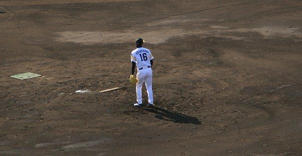 冬の宮崎は・・・プロ野球のキャンプだね_d0030373_21333418.jpg