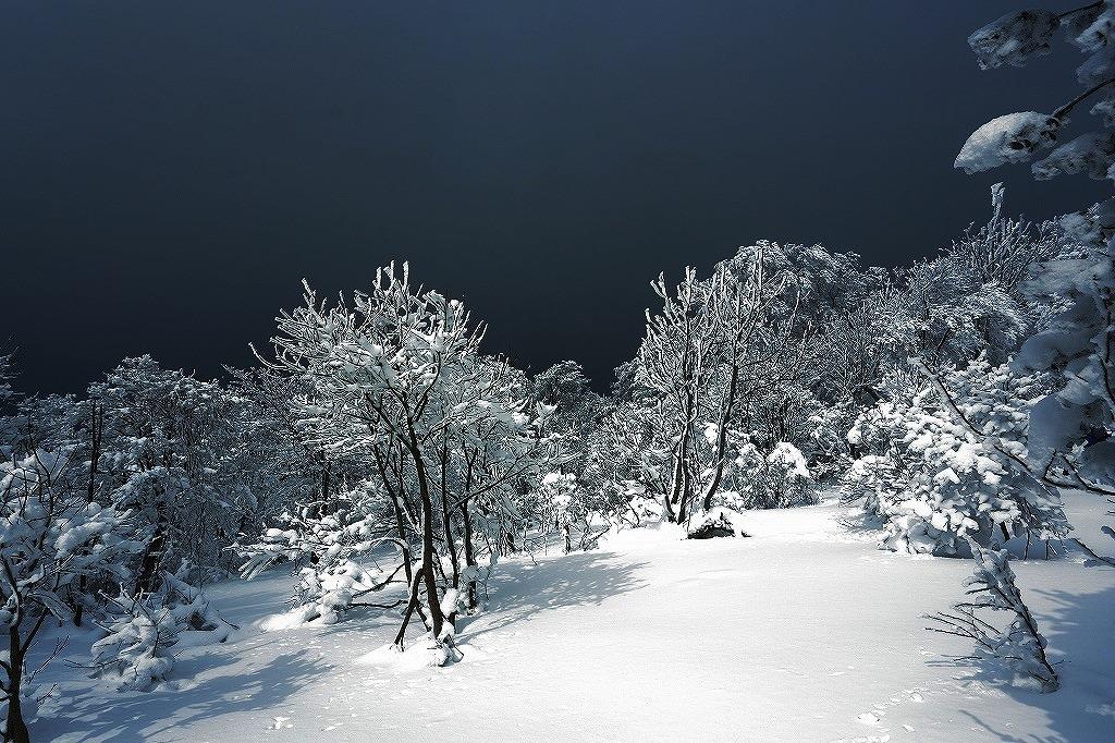 山に暮らせば_e0091879_1371956.jpg