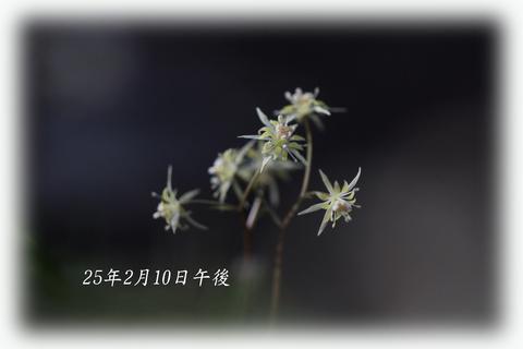 b0012595_22344769.jpg
