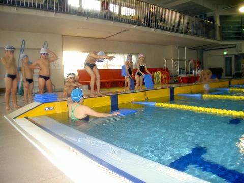 平泳ぎがんばるぞ!_b0286596_1712353.jpg