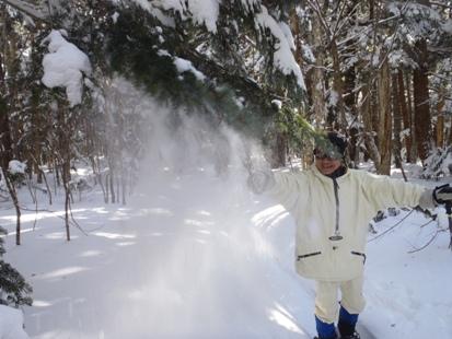 雪落としプロ_e0077899_9433592.jpg