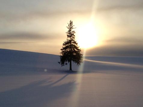 冬営業のお知らせです。_f0096216_18335293.jpg