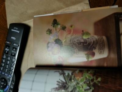 ジェンテから貰いました。「花の秘密」_a0256619_22592241.jpg
