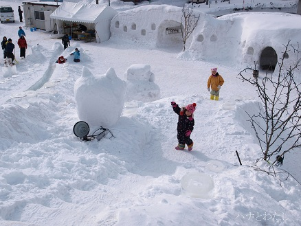 雪灯りフェスタ_e0120026_1018392.jpg