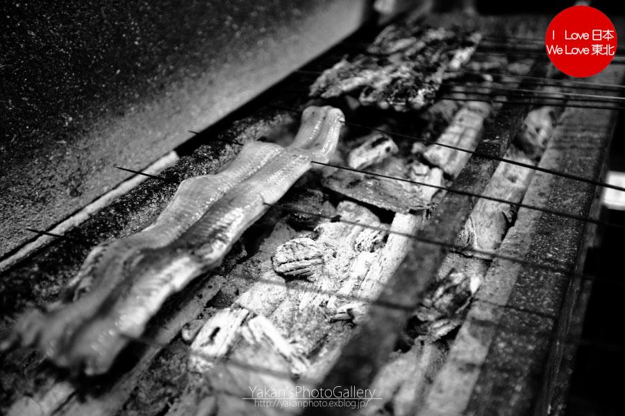 郡上八幡写真撮影記04 鯉のぼり寒ざらし うなぎの魚寅さん食事編_b0157849_2171153.jpg