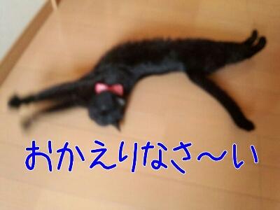 d0170555_0508100.jpg