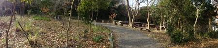 新山階段作り継続計画  in  運営委員会_c0108460_17313447.jpg