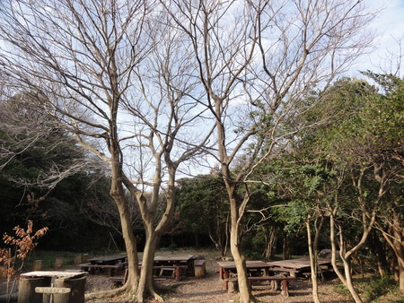 新山階段作り継続計画  in  運営委員会_c0108460_1732060.jpg